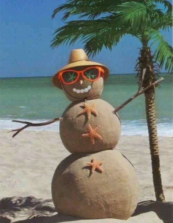 Florida winter pool maintenance